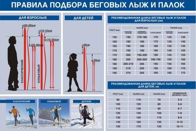 Как подобрать лыжи по росту и весу – таблица размеров – way empire—всё что нужно для путешествия!
