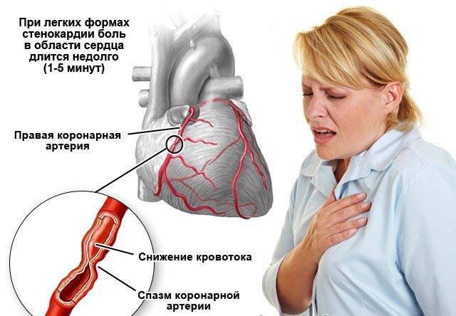 Исследование сердца: современные методы | компетентно о здоровье на ilive