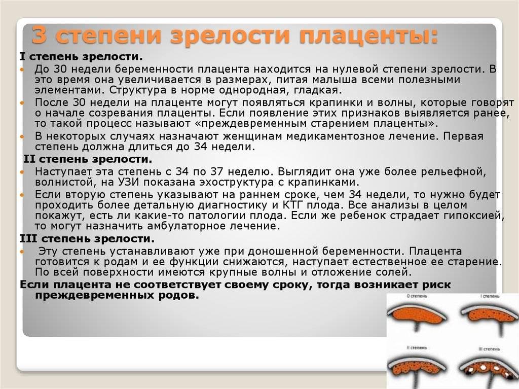 Таблица степеней зрелости плаценты по неделям и толщина. чем грозит раннее созревание - medside.ru