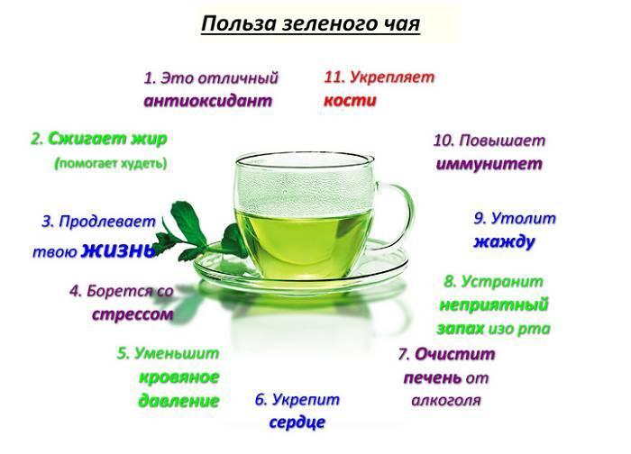 Можно ли при грудном вскармливании пить Иван-чай, полезные свойства и как заваривать
