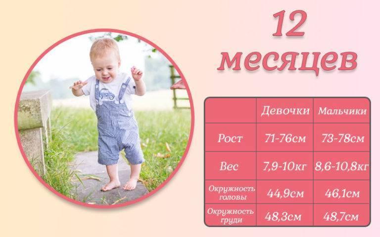 Развитие ребенка в 10 месяцев: что должен уметь, питание, вес и рост девочек и мальчиков, чему нужно учить