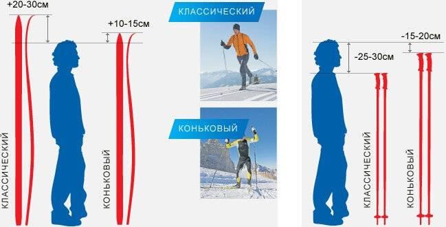Как выбрать лыжи ребенку и на что обращать внимание в первую очередь