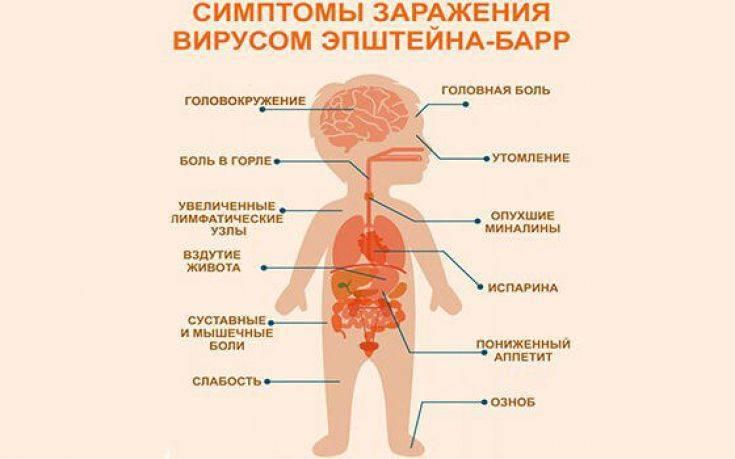 Инфекционный мононуклеоз - симптомы и лечение у детей и взрослых