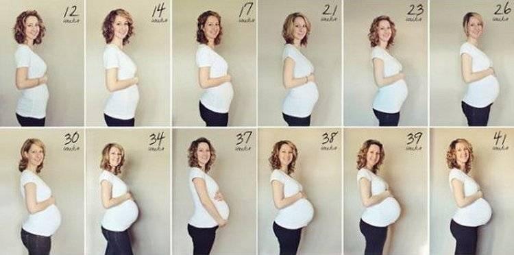 5 месяц беременности: развитие, вес и вид плода, рекомендациибеременность, роды и уход за ребенком