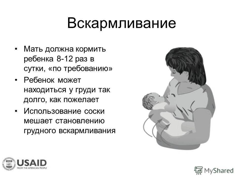 Будят ли для кормления новорожденных, если они долго спят днем или ночью