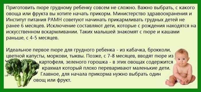 Сколько варить цветную капусту для детского пюре для прикорма грудничку (замороженную и свежую) по времени после закипания и как потом измельчить овощ для ребенка? русский фермер
