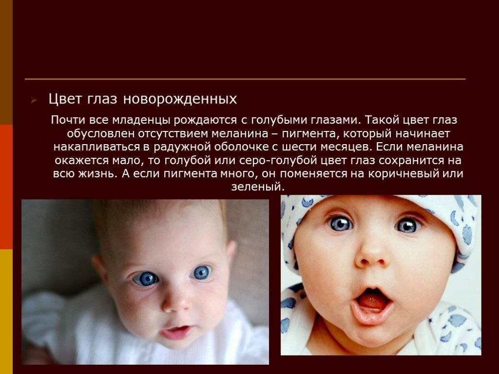 Когда у новорожденного определяется цвет глаз: неисследованная закономерность