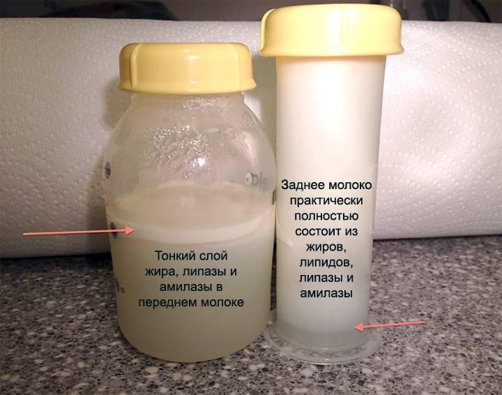 Определение жирности грудного молока в домашних условиях