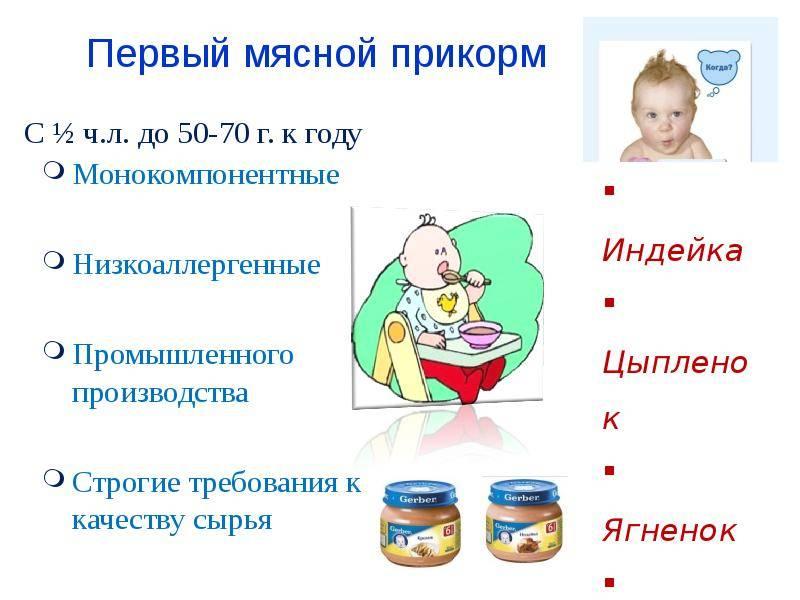 Каким образом вводится мясо в прикорм ребенку