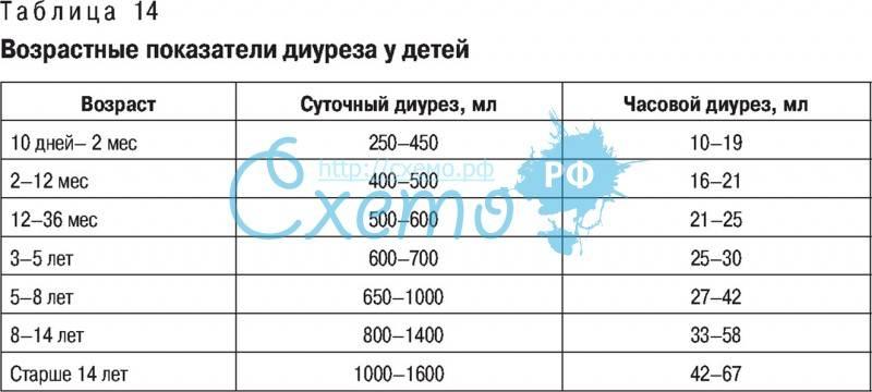 Норма суточного диуреза при беременности: таблица и пример, как правильно считать и сколько он составляет у беременных
