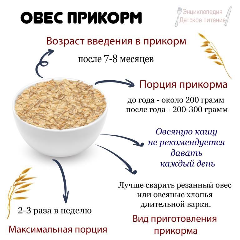 Как сварить овсяную кашу для грудничка на молоке и на воде: рецепт