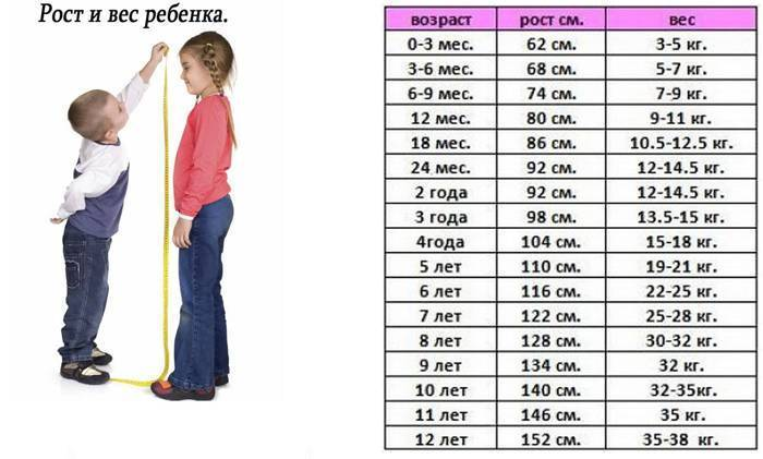 Рост ребенка в 3 года. таблица: возраст, вес, рост ребенка
