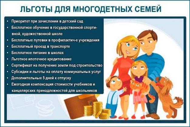 Перечень пособий и льгот для многодетных семей: список необходимых документов и правила их оформления