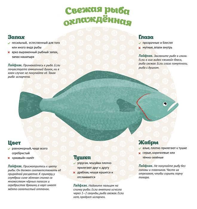 Икра при грудном вскармливании: польза и вред продукта из рыбы при гв, когда разрешено вводить его в рацион мамы и ребенка и как это правильно сделать?