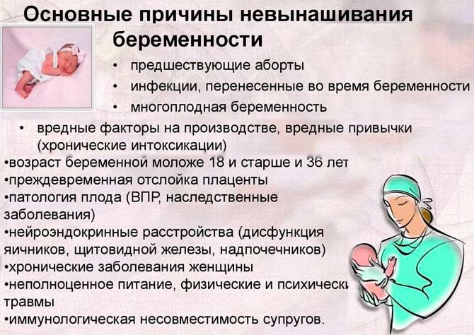 Остановка без требования или разговор о неразвивающейся беременности