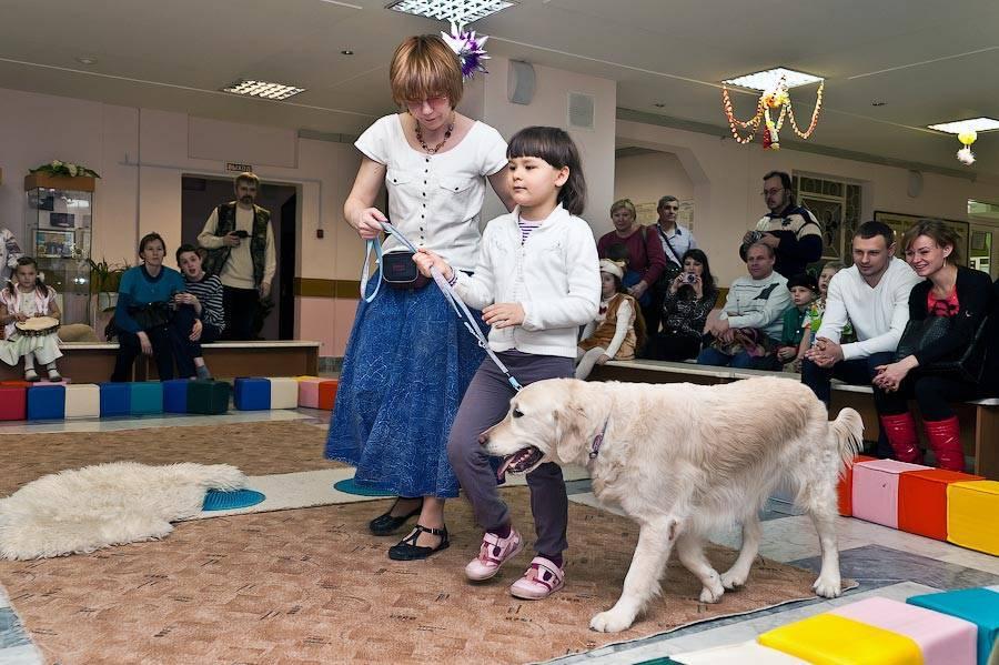 Пет-терапия: как животные лечат нас - сибирский медицинский портал
