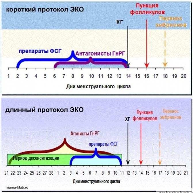 Эко. естественные циклы