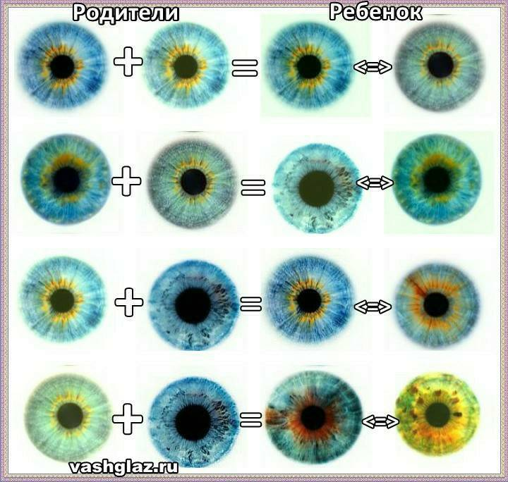 Когда у новорожденных меняется цвет глаз