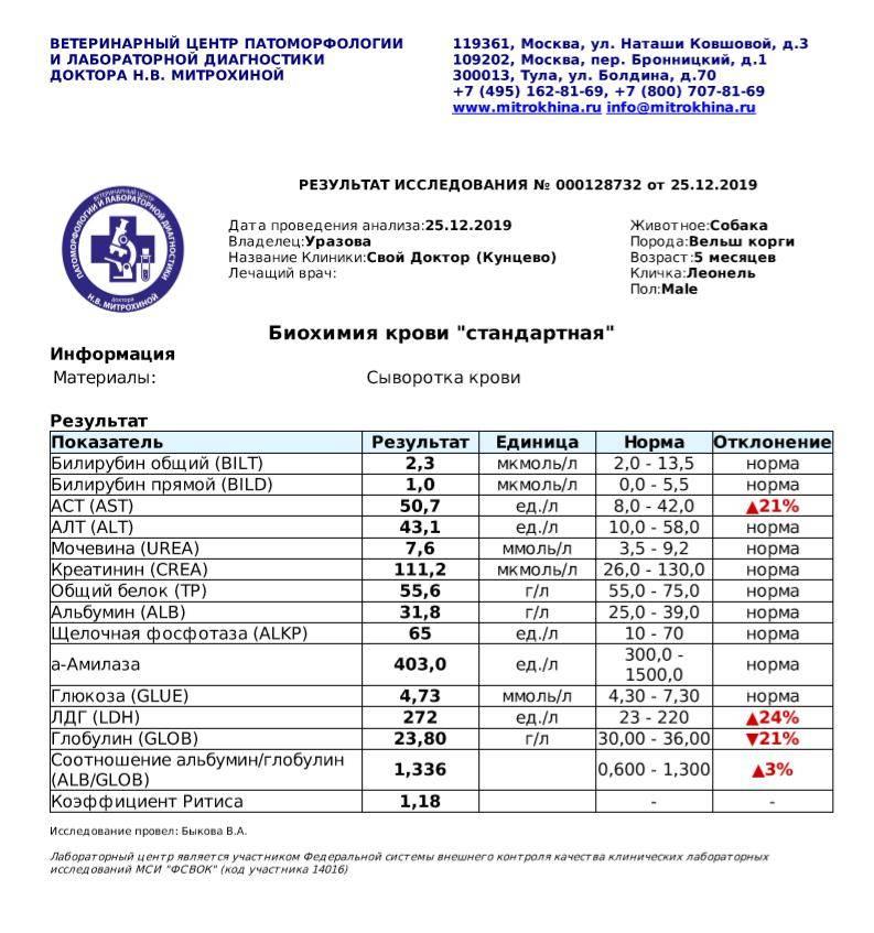 Биохимические показатели поджелудочной железы - сдать анализ крови при заболеваниях поджелудочной в спб | медицинский центр - медпросвет