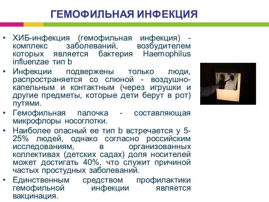 Хиберикс: прививка отгемофильной инфекции типаb (хиб-инфекции)