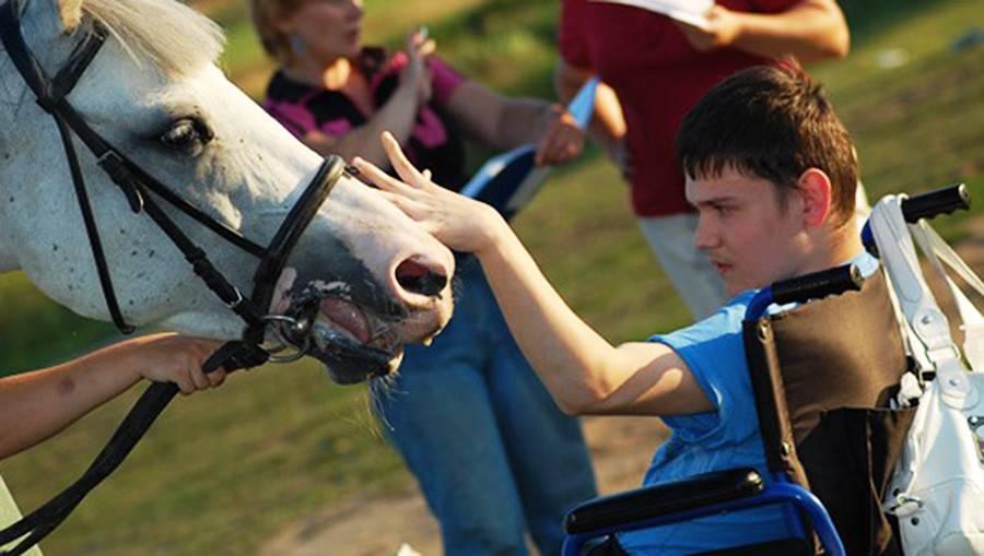 В подмосковье детей с овз лечат с помощью лошадей