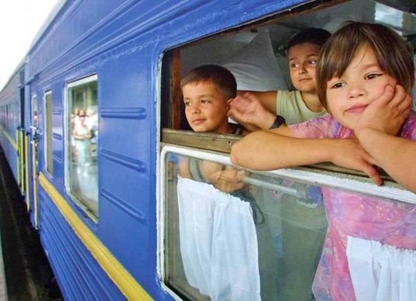 Перевозка собак в поезде ржд - новые правила 2021 года: как перевозить псину по россии