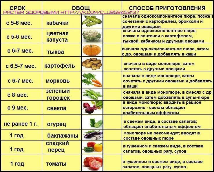 Авокадо - полезные свойства, противопоказания. как едят авокадо и что из него приготовить? как вырастить авокадо дома?