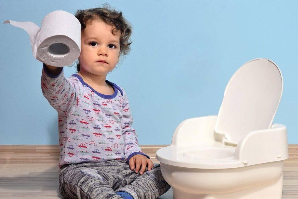 Как приучить ребенка к горшку: несколько действенных методик