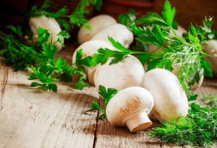Можно ли чеснок, грибы (шампиньоны) и картошку при грудном вскармливании