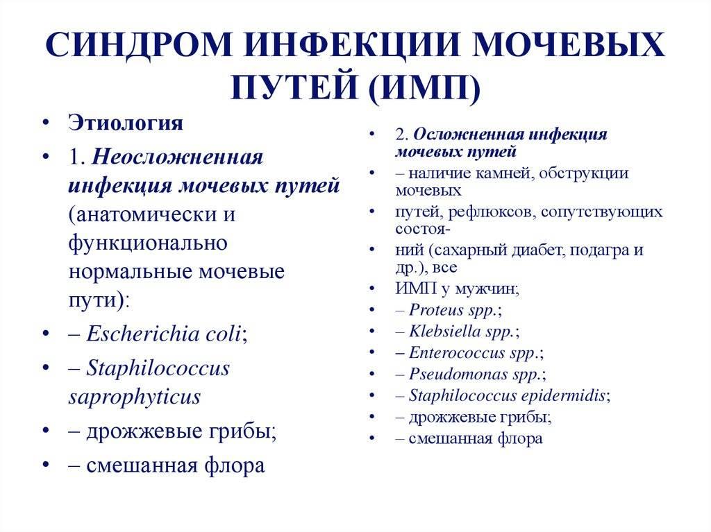 Инфекция мочевыводящих путей (имвп) у беременных