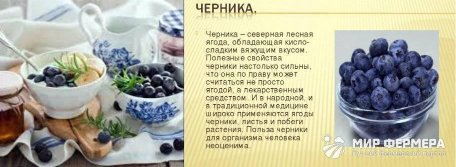Как употреблять ягоды с максимальной пользой для здоровья?