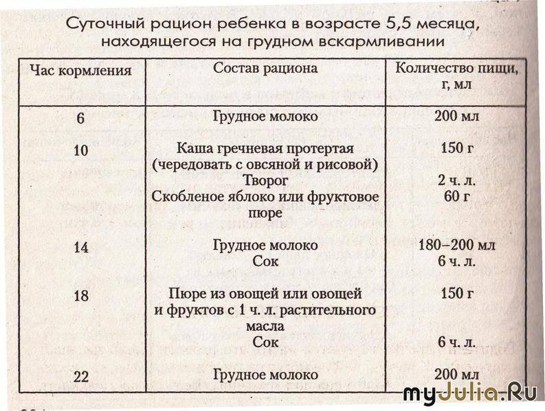 Особенности питания ребенка в 9 месяцев: рацион, режим, меню, искусственное и грудное вскармливание, развитие и уход