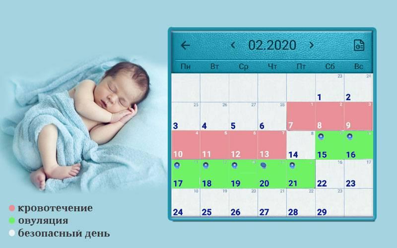 Рассчитать овуляцию: калькулятор для зачатия и планирования пола ребенка
