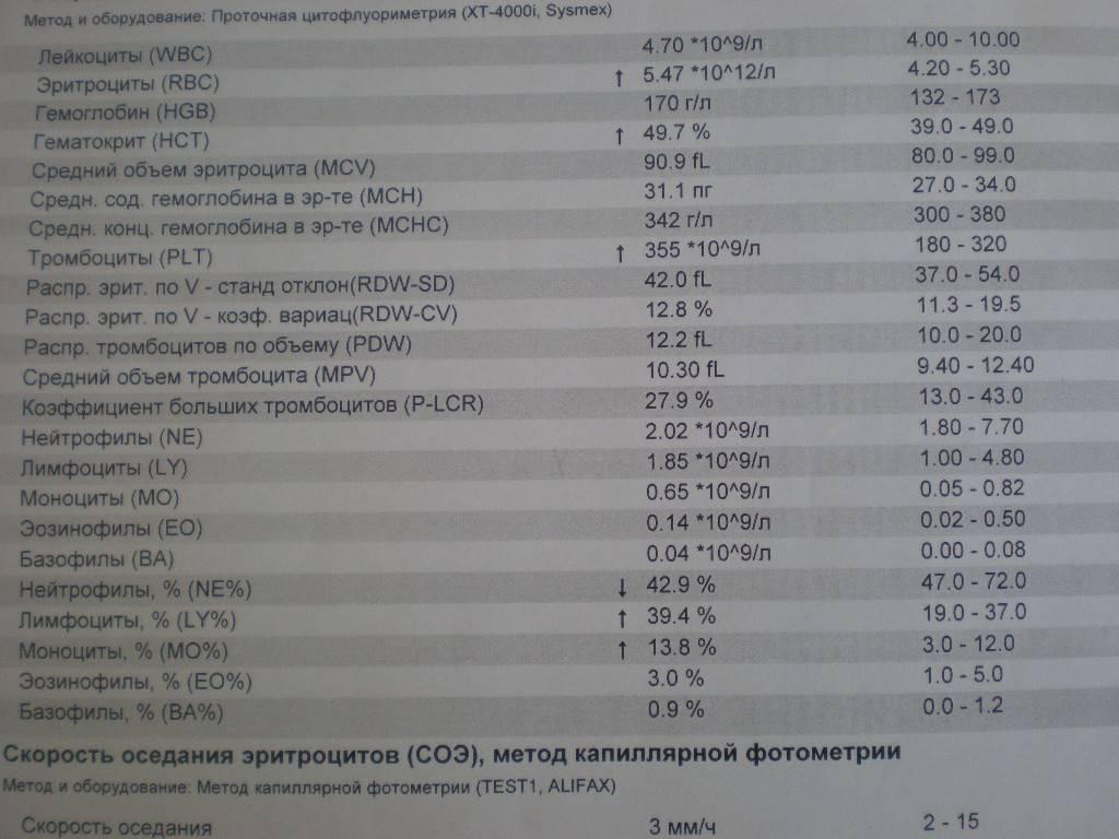Моноциты выше нормы. в чем причина? * клиника диана в санкт-петербурге
