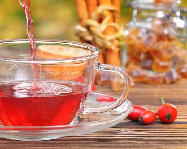 Полезные свойства и правила употребления шиповника при ГВ, можно ли пить