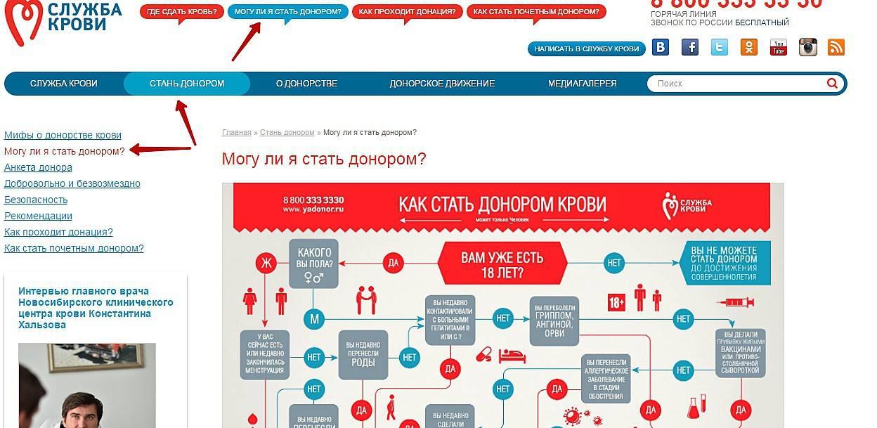 Эко с донорским материалом: цена, результативность, отзывы в клинике «линия жизни», москва