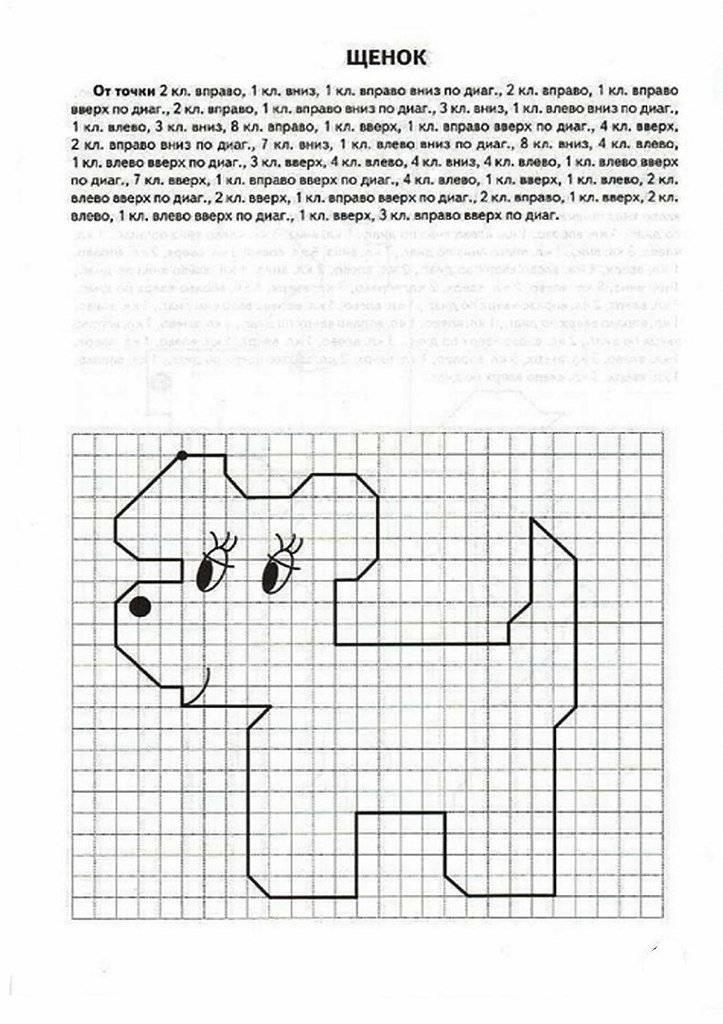 Графические диктанты для дошкольников. уроки рисования по клеточкам для дошкольников