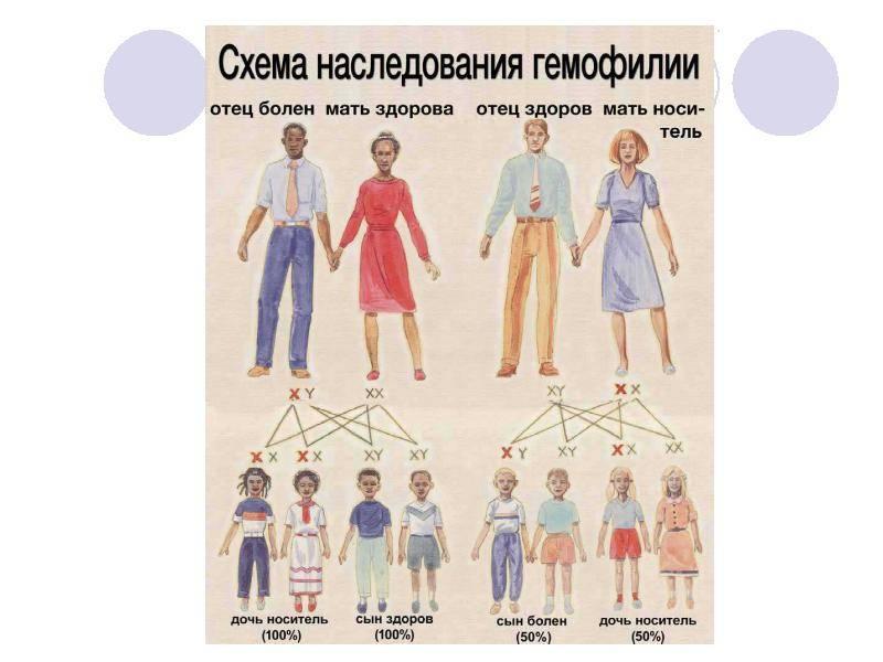 Гемофилия: информация для медицинского персонала
