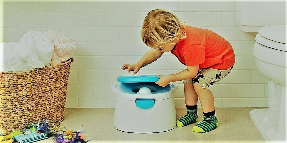 Как приучить ребенка к горшку быстро и без слез. приучение к горшку