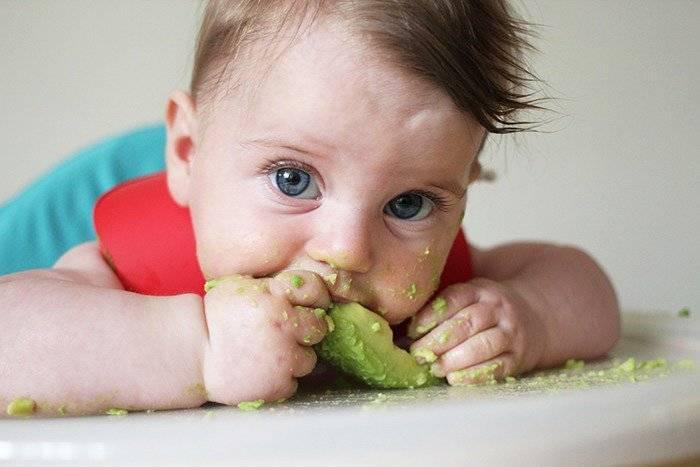 Авокадная диета для похудения: как правильно есть авокадо чтобы похудеть в животе