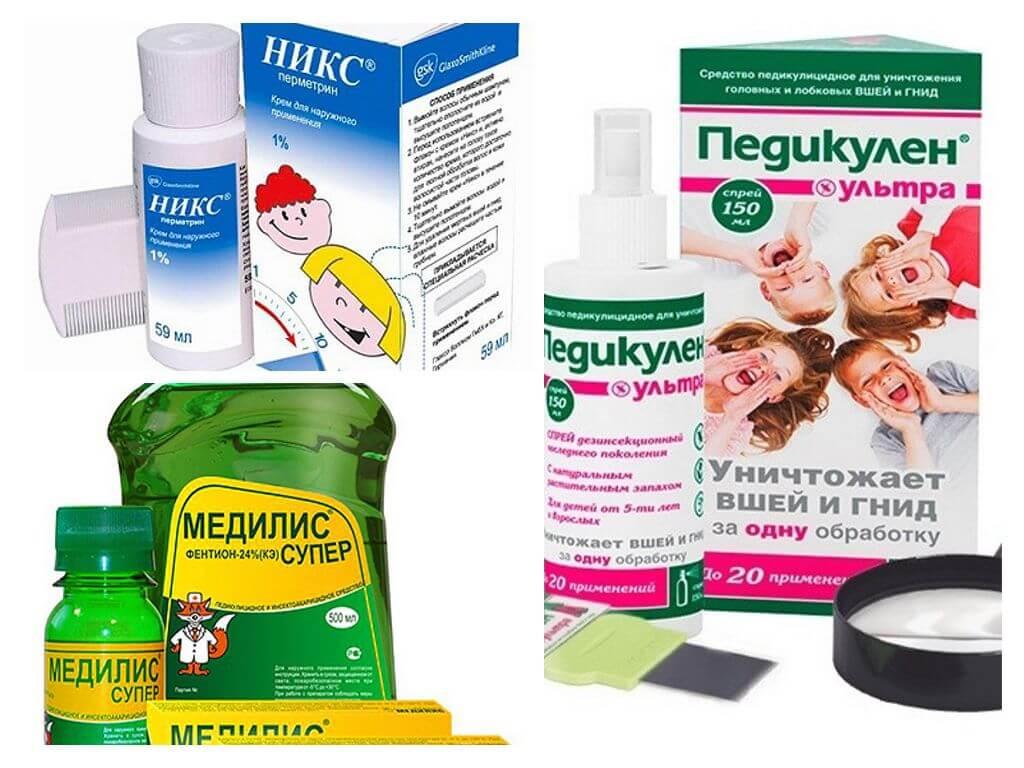 Вши у детей. профилактика и лечение педикулеза