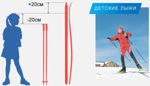 Как выбрать коньковые лыжи: как подобрать лыжи для конкового хода