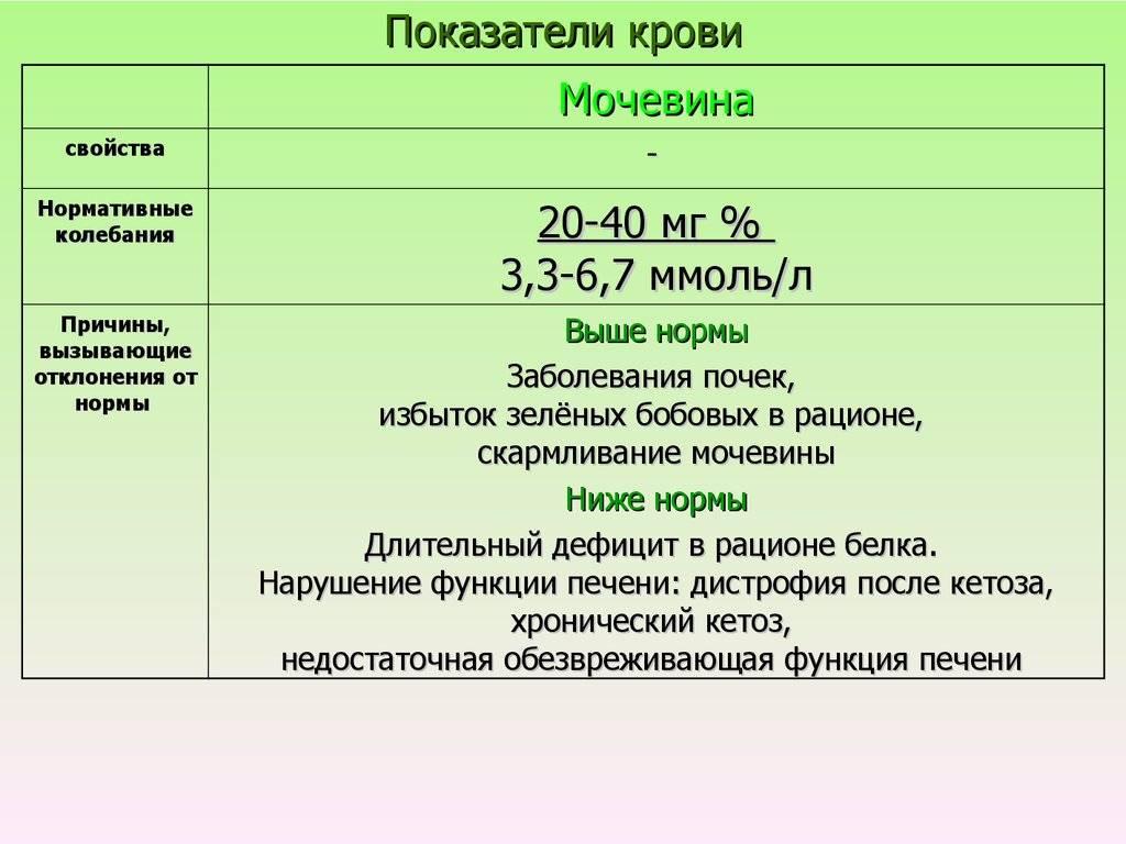 Мочевина в крови: норма и отклонения у детей | детские анализы в медицинской лаборатории эндомедлаб  (г. москва, м. дмитровское, м. борисово)
