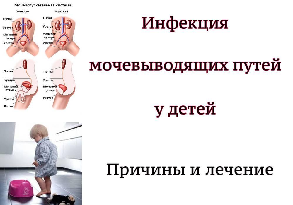 Причины и лечение инфекций мочевыводящих путей у грудничков