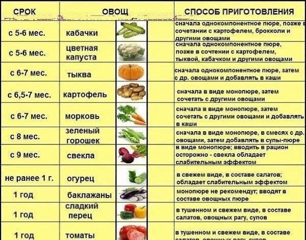 Тонкости первого прикорма цветной капустой