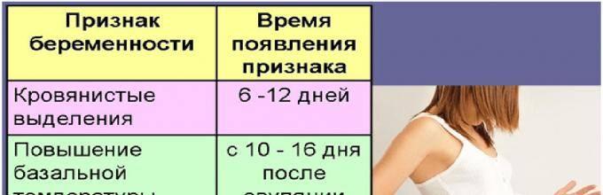 Как определить беременность