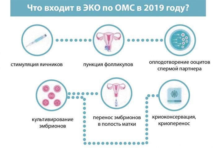 Эко стоимость в москве  сколько стоит эко оплодотворение и где лучше сделать - «за рождение»
