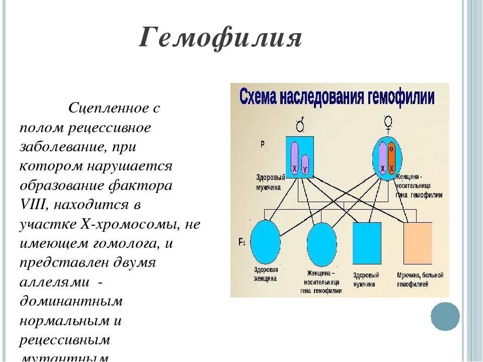 Гемофилия | компетентно о здоровье на ilive