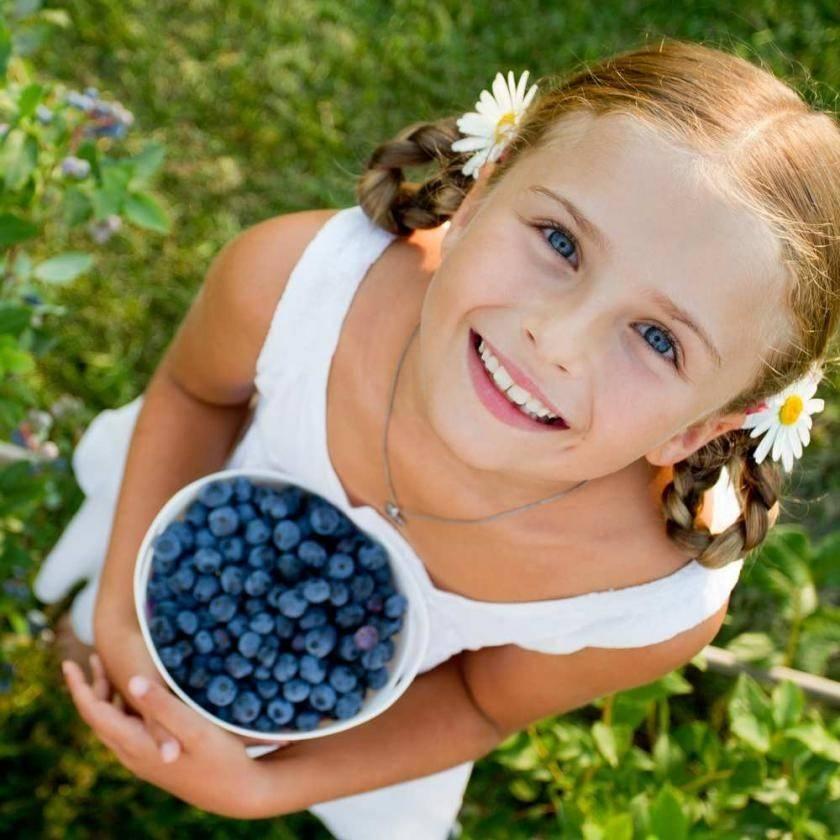 Голубика: полезные свойства для детей, противопоказания, как ввести в рацион в 1, 2 года