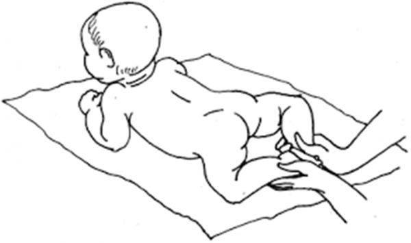 Когда дети начинают ползать самостоятельно — нормы по месяцам